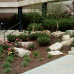 dependable and comprehensive landscape care