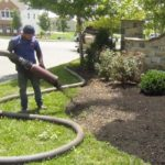 professional landscape mulching