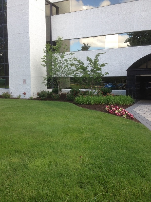 commercial sustainable landscaping
